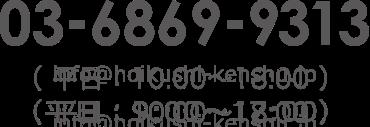 03-6869-9313